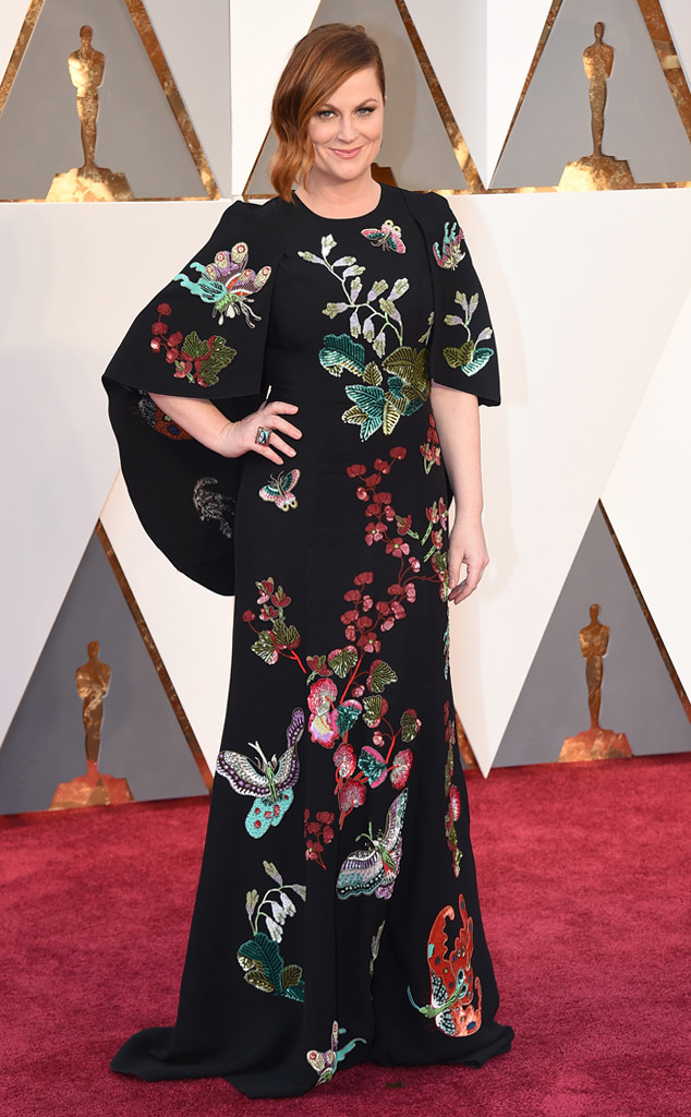Strauss, Jordan. Amy Poehler in Andrew GN. 2016. Web. 28 Feb. 2016. http://www.eonline.com/photos/18308/oscars-2016-what-the-stars-wore/684133.